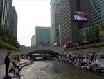 Dân số Seoul liên tục giảm