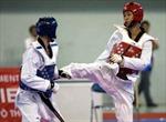 Chỉ còn hy vọng ở taekwondo