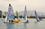 Hoãn tổ chức Festival Du thuyền quốc tế tại Việt Nam