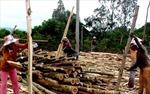 Khó đạt mục tiêu về việc cấp chứng chỉ rừng