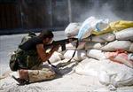 Máy bay chiến đấu Syria bị bắn hạ?