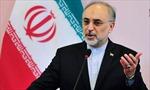 Iran muốn bắt tay Ai Cập, phương Tây lo lắng