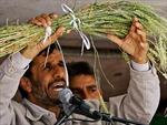 Iran 'lặng lẽ' mua lúa mỳ trên thị trường thế giới