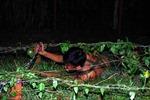 Lính trinh sát 'xuất qủy nhập thần' trong đêm