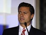 Mexico công nhận ông Paña Nieto là tổng thống đắc cử