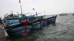 Đà Nẵng hỗ trợ gần 400 triệu đồng triển khai phần mềm quản lý tàu cá