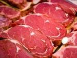 Doanh nghiệp Châu Âu quảng bá công nghiệp thịt tại VN