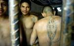 Hơn nửa số nhà tù ở Mexico do gangster tự quản