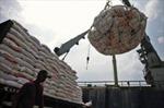 Indonesia không nhập khẩu gạo đến quý I/2013