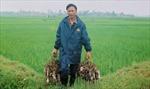 'Đặc sản' thịt chuột ở Thái Bình