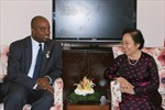 Phó Chủ tịch nước Nguyễn Thị Doan dự Hội nghị Cấp cao Pháp ngữ