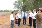 Việt Nam- thị trường nhập khẩu gia súc sống tiềm năng của Australia