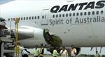 Máy bay Qantas hạ cánh khẩn vì mùi lạ
