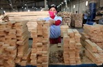 Chế biến gỗ hướng tới ngành công nghiệp mũi nhọn