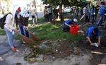 Tuổi trẻ Đại học Đà Nẵng hành động vì môi trường