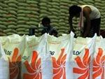 Indonesia nhập 300.000 tấn gạo của Việt Nam