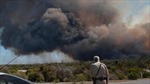 Australia: Hỏa hoạn thiêu trụi hơn 2.000 hécta rừng