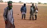Tây Phi quyết định đưa quân vào bắc Mali