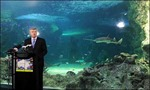 Khu bảo tồn biển lớn nhất thế giới ở Ôxtrâylia