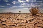 Trái đất lĩnh hậu quả tàn khốc nếu nhiệt độ tăng 4 độ C