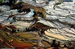 Ruộng bậc thang Vân Nam, Trung Quốc đẹp mê hồn