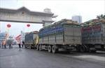 Tìm hướng giảm nhập siêu từ Trung Quốc