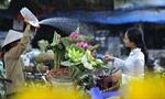 """Cuộc thi ảnh nghệ thuật """"Sen trong đời sống văn hóa Việt"""""""