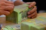 Phú Yên phát hiện 25 đơn vị sai phạm về kinh tế