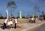Hơn 25.000 cây xanh được trồng tại Hội An