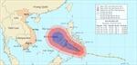 Vùng nguy hiểm của bão Bopha từ Đà Nẵng đến Vũng Tàu