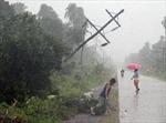 Bão Bopha gây thương vong nặng nề ở Philippines