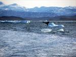 Nga và tham vọng mở tuyến hàng hải xuyên Bắc Cực
