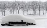 Giao thông châu Âu tê liệt do bão tuyết