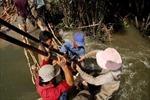 Vỡ đê bao ở TP HCM, hàng chục hộ dân chìm trong nước