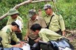 'Nóng' nạn phá rừng giáp ranh tại Bình Thuận