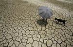 11 sự cố thời tiết khắc nghiệt nhất năm 2012
