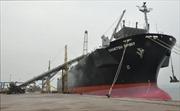 Hai tàu hàng xông Cảng Cái Lân
