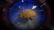 Tạo não người từ tế bào gốc