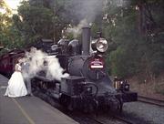 Độc đáo 'đoàn tàu cưới' tại Nga