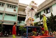 Múa lân sư rồng Việt Nam