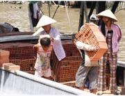 Công bố báo cáo quốc gia đầu tiên về lao động trẻ em