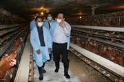 Kiểm tra công tác phòng chống cúm gia cầm tại Lạng Sơn