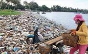 Cấp bách bảo vệ môi trường, sinh thái biển