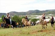 Đua ngựa không yên trên đỉnh Langbian