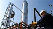 Nga đặt điều kiện hạ giá khí đốt cho Ukraine