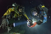 Phát hiện xương hóa thạch 12.000 năm tuổi