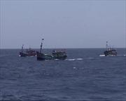 Tàu Trung Quốc lại tấn công tàu cá Việt Nam