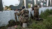 Cộng hòa tự xưng Donetsk hoàn tất dự thảo gia nhập Nga