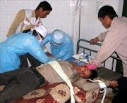 Yên Bái: Người dân còn chủ quan với bệnh dại