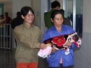 Kết luận 3 trẻ sơ sinh tử vong ở Quảng Trị là do tiêm nhầm thuốc